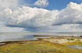 Sea coastline. — Stock Photo