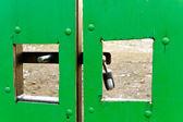 Green gate. — Stock Photo