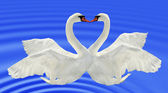Two swans. — Stock Photo