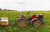 Old traktor. — Stock Photo