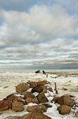 Breakwater. — Stock Photo