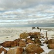 Stock Photo: Breakwater.