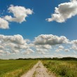 Beautiful clouds above road. — Stock Photo #30660517