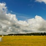 White plastic hay bales. — Stock Photo #30660679