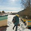 Apiarist in winter season. — Stock Photo