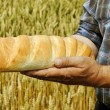Man with bread. — Stock Photo #30662677