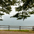 Fence at the lake. — Stock Photo