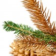 Stock Photo: Twigs of fir tree.
