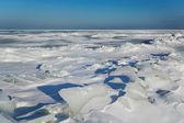 Winter at the Baltic sea. — Stock Photo