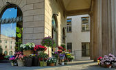 Flower shop. — Stock Photo