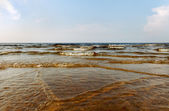 Warm Baltic sea. — Stockfoto