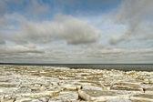 The sea in ice. — Stok fotoğraf