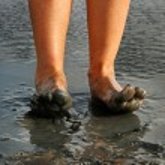 Woman legs. — Stock Photo