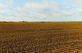 Country landscape. — Стоковое фото