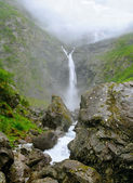 Norway waterfall. — Foto de Stock