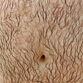 Hairy stomach. — Stock Photo