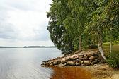 Big river. — Stock Photo