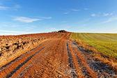 Land landschap. — Stockfoto