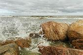 Fırtınalı denizde. — Stok fotoğraf