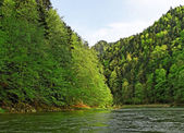 River Dunajec. — Stock Photo