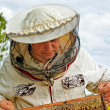 Beekeeper is working. — Stock Photo #38666177