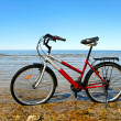 Bicycle on beach. — Stock Photo #38666217