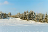 зимний пейзаж. — Стоковое фото