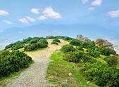 メテオラの山々. — ストック写真