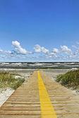 Path to the sea. — Stock Photo