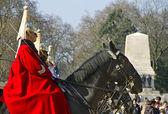 女王の馬見回っている守衛に. — ストック写真