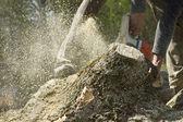 Man cuts a fallen tree. — Stock Photo