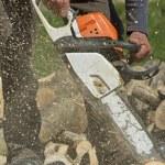 ������, ������: Man cuts a fallen tree
