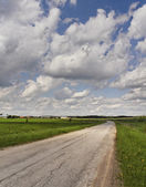 Turn country road. — Stock Photo