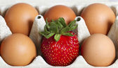 Eggs and strawberry. — Stock fotografie