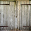 Old wooden barn door - Stock Photo