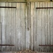Old wooden barn door — Stock Photo