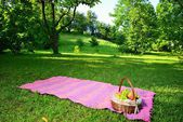Picnic in the park — Stock Photo