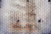 Kovové stěny texturou rezavé pozadí — Stock fotografie