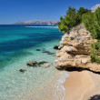 Beautiful Adriatic Sea bay with pines in Makarska, Croatia — Stock Photo #25163603
