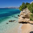 Beautiful Adriatic Sea bay with pines in Makarska, Croatia - Stock Photo