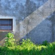 Grungy old wall of house, grown with wild grass with a strip of - Stock Photo