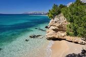 Hermosa bahía del mar adriático con pinos en makarska, croacia — Foto de Stock