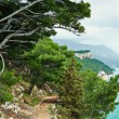 beautiful scenic hiking trails in the park of makarska — Stock Photo