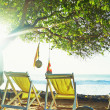 Stock Photo: Empty deck chairs on the ocean under a tree