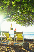 Empty deck chairs on the ocean under a tree — Stock Photo