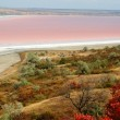 Постер, плакат: Rare phenomena landscape of salt Kuyalnicky liman lake