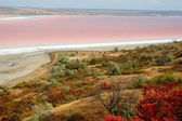 Rare phenomena - landscape of salt Kuyalnicky liman (lake) — Stock Photo