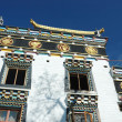 Zigar Drikung Kagyud Institute, important holy place for tibetans - Stok fotoraf