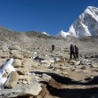 Kala Patthar peak (5164 m ),Everest region,Nepal — Stock Photo