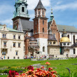 Royal Archcathedral Basilica of Saints Stanislaus and Wenceslaus on the Wawel Hill, Poland — Stock Photo #27433485